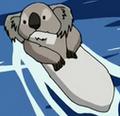Koalaotter Avatar