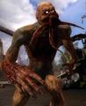 Bloodsucker (Stalker)