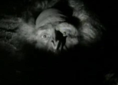 File:Yeti.AbominableSnowman.jpg