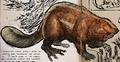 Giant Beaver (ARK)