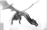 Bulcodragon