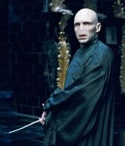 Harry-potter-Voldermort
