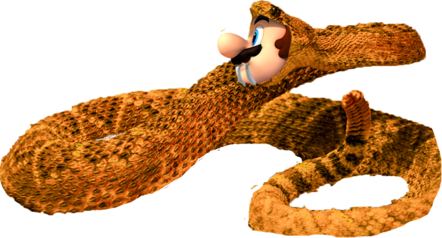 File:SnakeMario.png