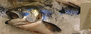 File:Mackerel at w-store.png