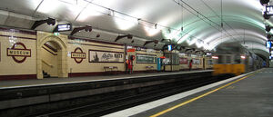 Sydney Trains S set train at Museum Station