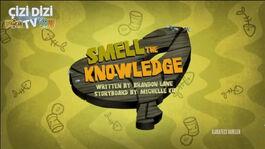 Smelltheknowledgex