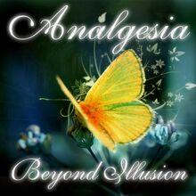 1325538904 analgesia-beyond-illusion-2011