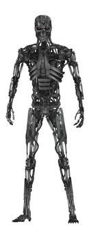 Skel Borg