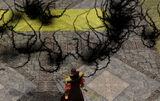 Evards tentacles