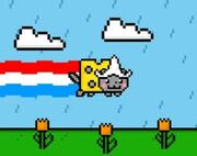 Dutch Nyan Cat