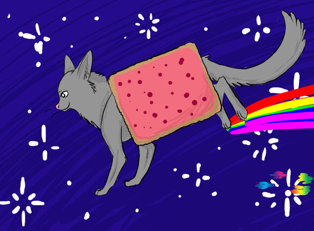 File:Nyan Cat 10.jpg