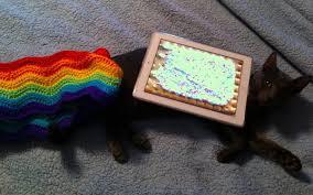 File:Nayan Cat.jpg