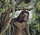 Rock Apes