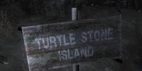 Turtle Stone Island