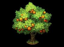 File:Orange tree.png