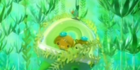 The Kelp Forest Rescue