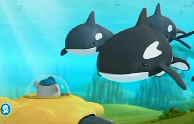 File:The Orcas and Barnacles.png