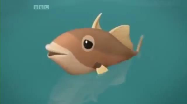 File:Triggerfish (Series 02 - Episode 15).mp4 000392033.jpg
