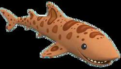 Swellshark