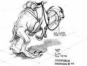 Elum back concept saddle