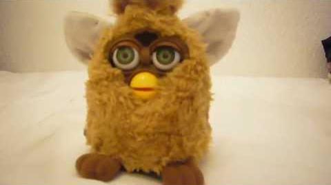 Furby Original 2000, Serie 8, Labrador