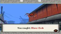 River Crab