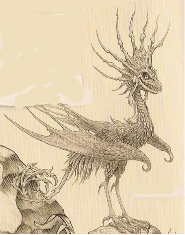 File:Cockatrice Dragon.png