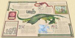Inside-dragonology