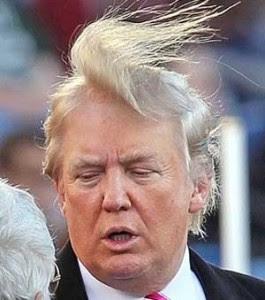 File:Trumphair.jpg