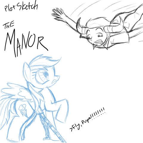 File:Plot the manor.png