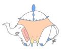 Thumbnail for version as of 16:55, September 27, 2015