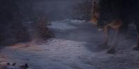 Werewolves/Gallery
