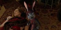 Mrs. Rabbit/Gallery