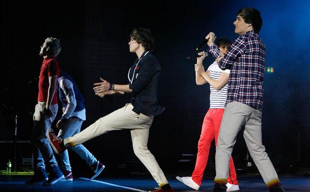 File:1D-Concert-Harry.jpg