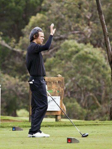 File:Harry Golf.jpg