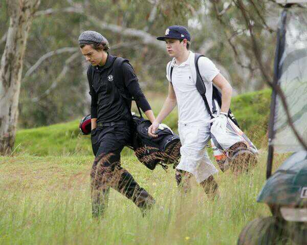 File:Harry and Niall.jpg