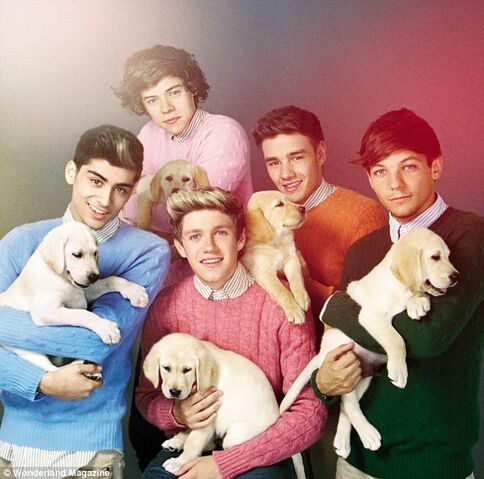 File:One-Direction-Puppies.jpg