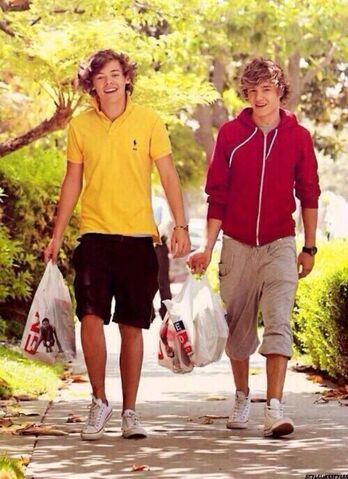 File:DO YOU REMEMBER WHEN HARRY AND LIAM HAD THE SAME HAIR.jpeg