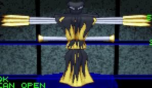 File:Raven pyros.jpg
