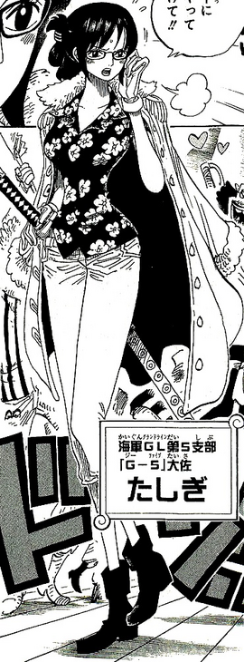 Tashigi Manga Post Timeskip Infobox