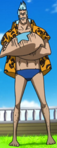 File:Franky Movie 10 Forth Outfit.png