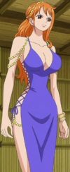 Nami's Second Zou Outfit.png