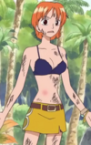 Nami's Bra Little Garden Arc
