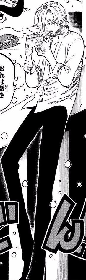 Soubor:Sanji Manga Post Timeskip Infobox.png