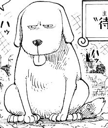 File:Holy Manga Infobox.png