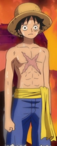 File:Luffy Punk Hazard First Outfit.png
