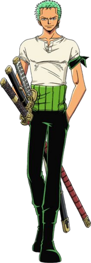 Zoro's Common Outfit