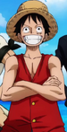Monkey D. Luffy Anime Pre Timeskip Infobox