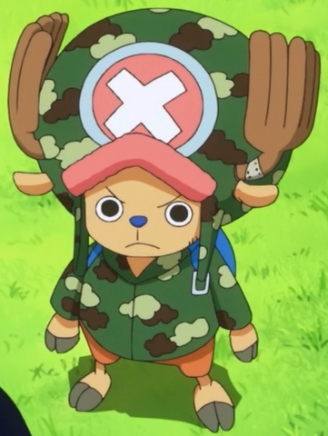 File:Chopper Camouflage.png