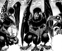 The Three Crows